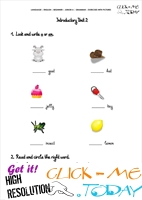 Grammar Exercises With Pictures - Indefinite Article 2