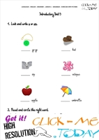 Grammar Exercises With Pictures - Indefinite Article 5