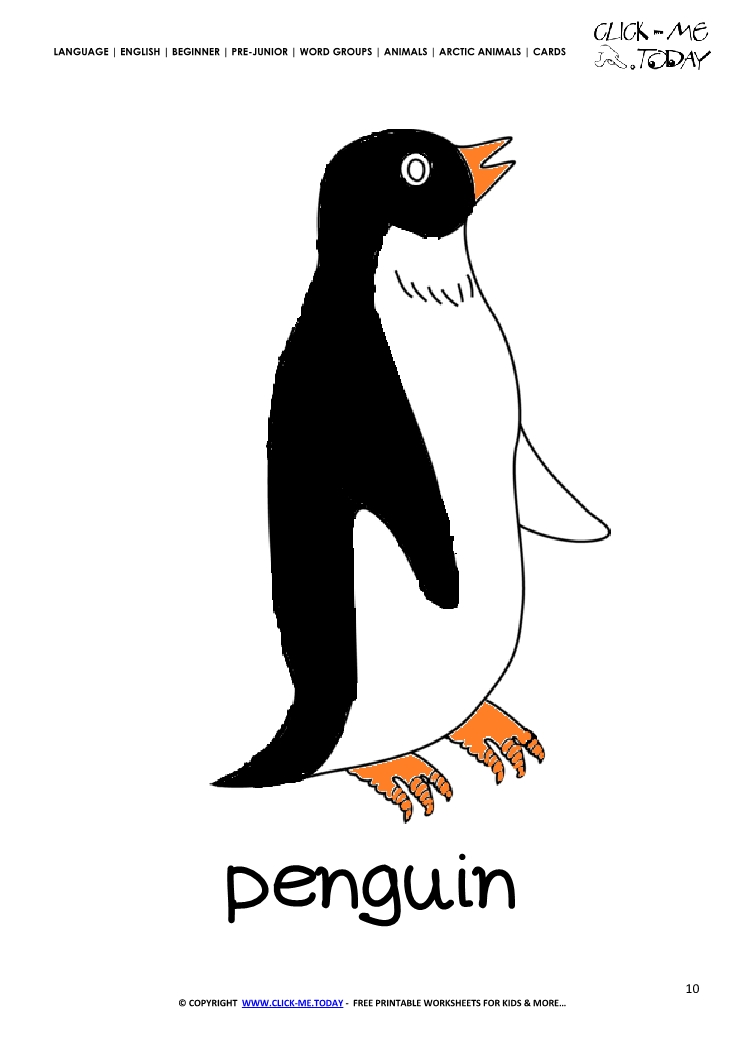 card penguin flashcard 10