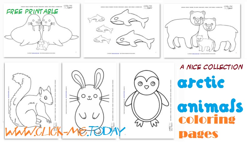 Arctic animals free printable coloring pages for Arctic animals printable coloring pages