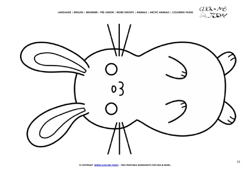 Coloring page Arctic Hare Color