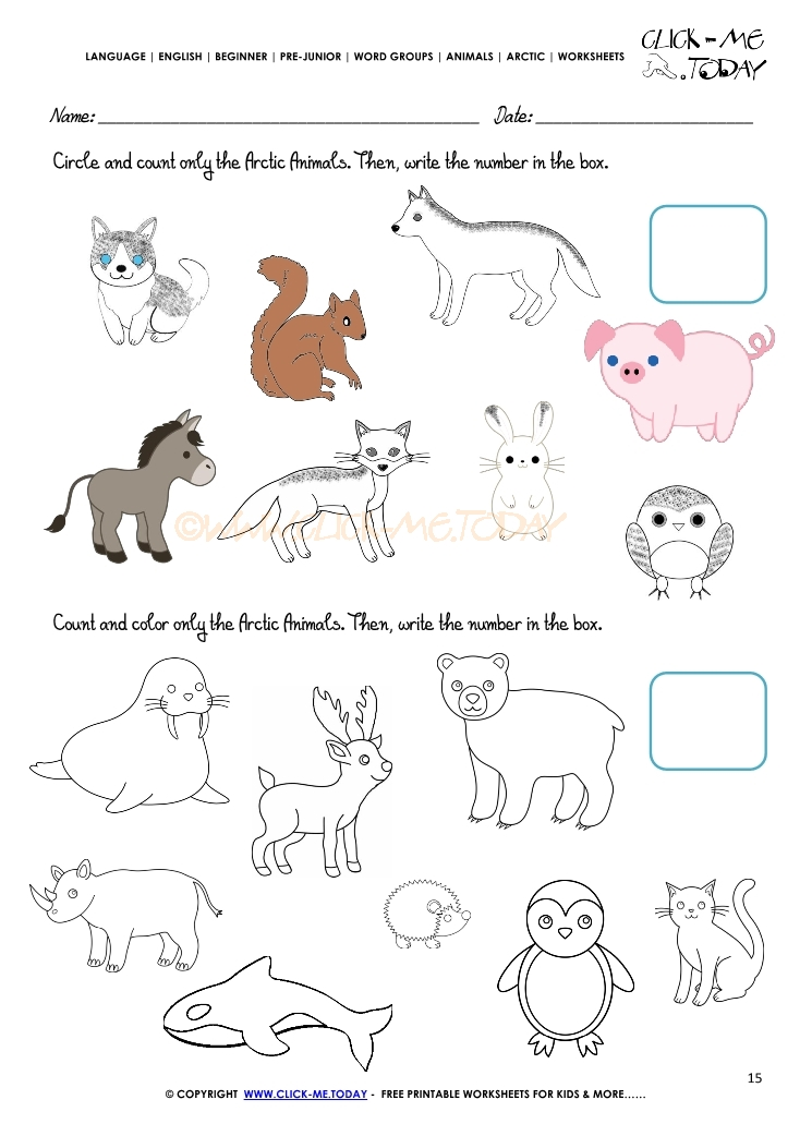 Animals Worksheet Activity sheet Count 1 – Animal Groups Worksheets