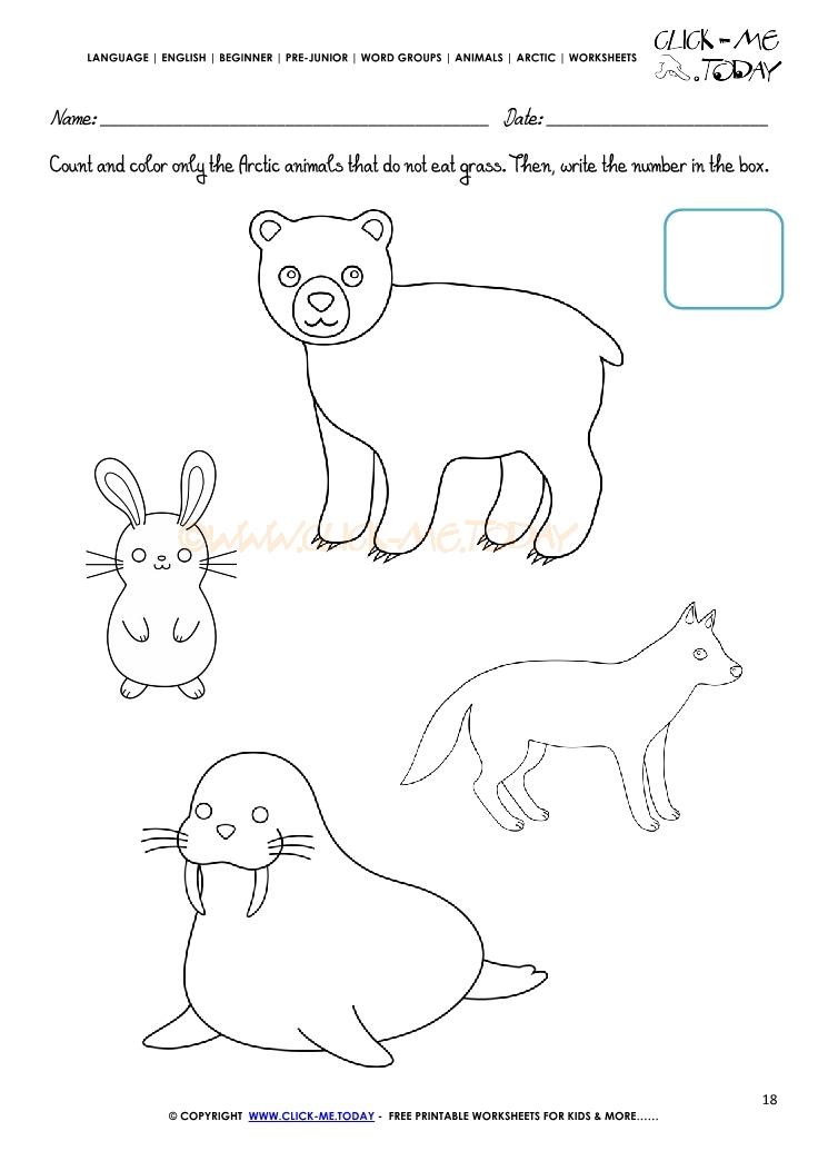 arctic animals worksheet activity sheet count 4. Black Bedroom Furniture Sets. Home Design Ideas