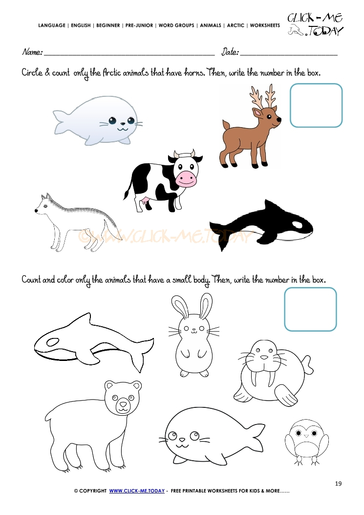 Arctic Animals Worksheet - Activity sheet Count 5