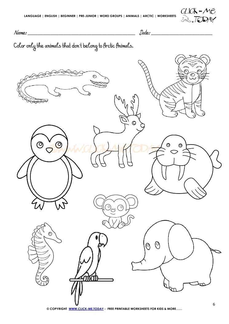 Printable Worksheets animals printable worksheets : Animals Worksheet - Activity sheet Color 4