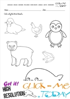 Arctic Animals Worksheet - Activity sheet Color 1