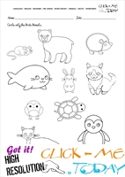 Arctic Animals Worksheet - Activity sheet Circle 1