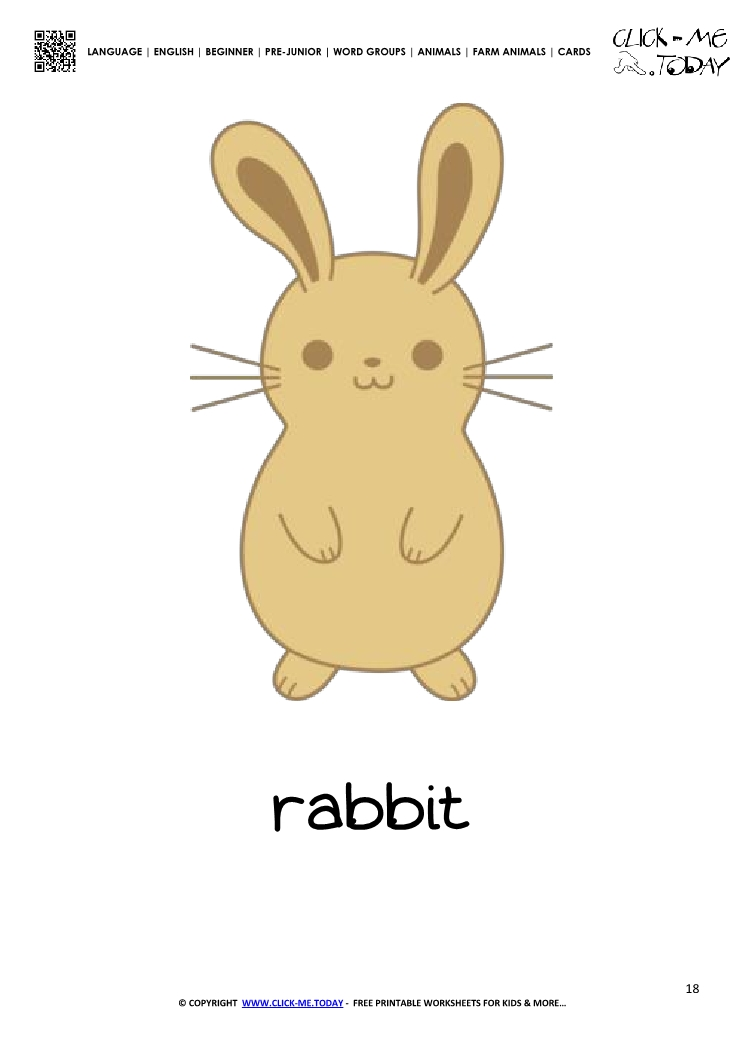 Farm animal flashcard Rabbit