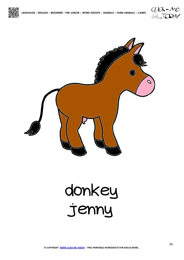 Farm animal flashcard Donkey Jenny - Printable card of Donkey