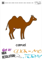 Farm animal flashcards Cow Camel Card of Camel