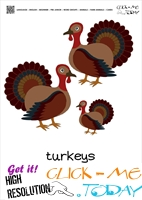 Farm animal flashcards Turkeys Card of Turkeys