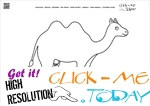 Coloring page Cow Camel - Color picture of Camel