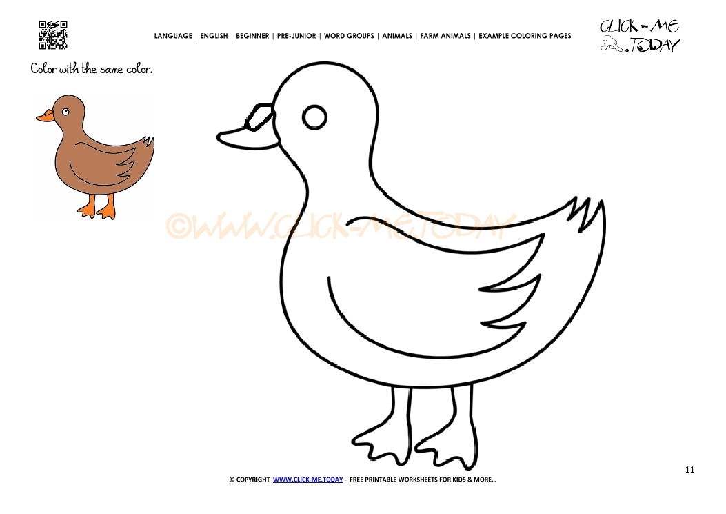 Example Coloring Page Duck Drake Color Picture Of