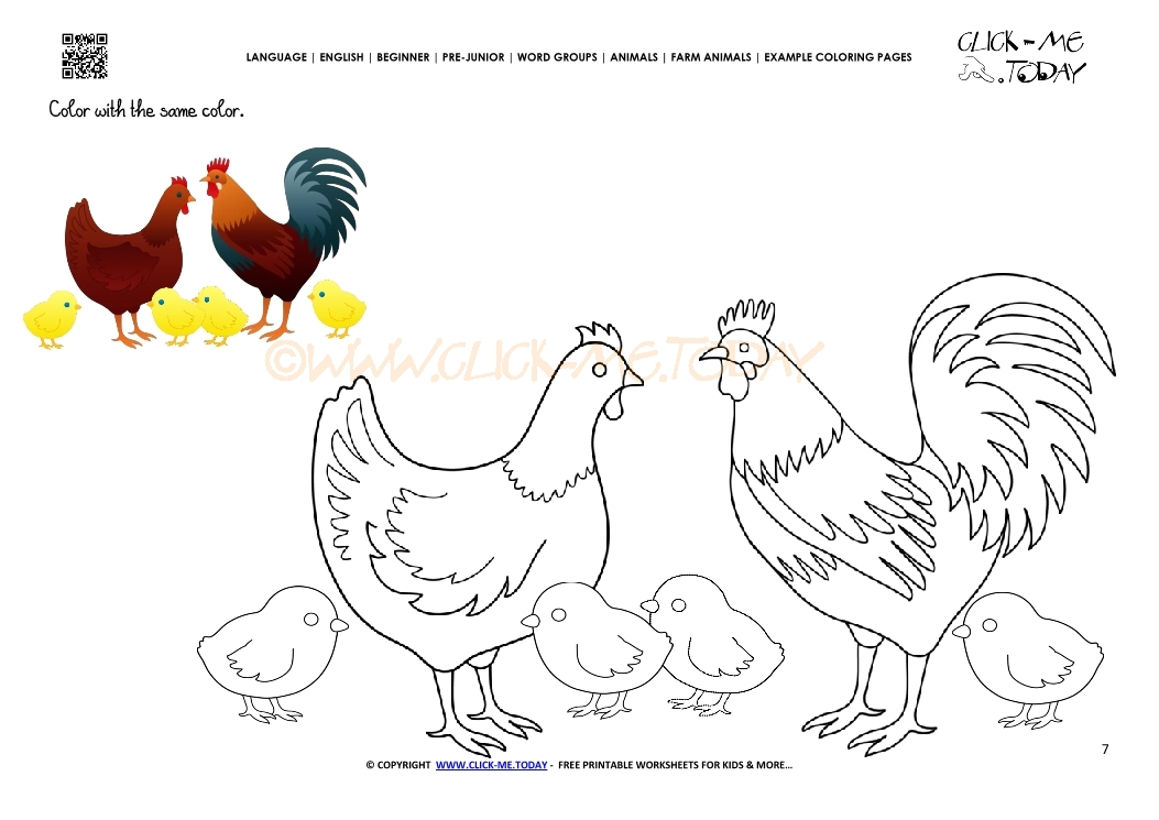 example coloring page chickens color picture of chickens