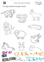 Farm Animals Worksheet  - Activity Sheet 6