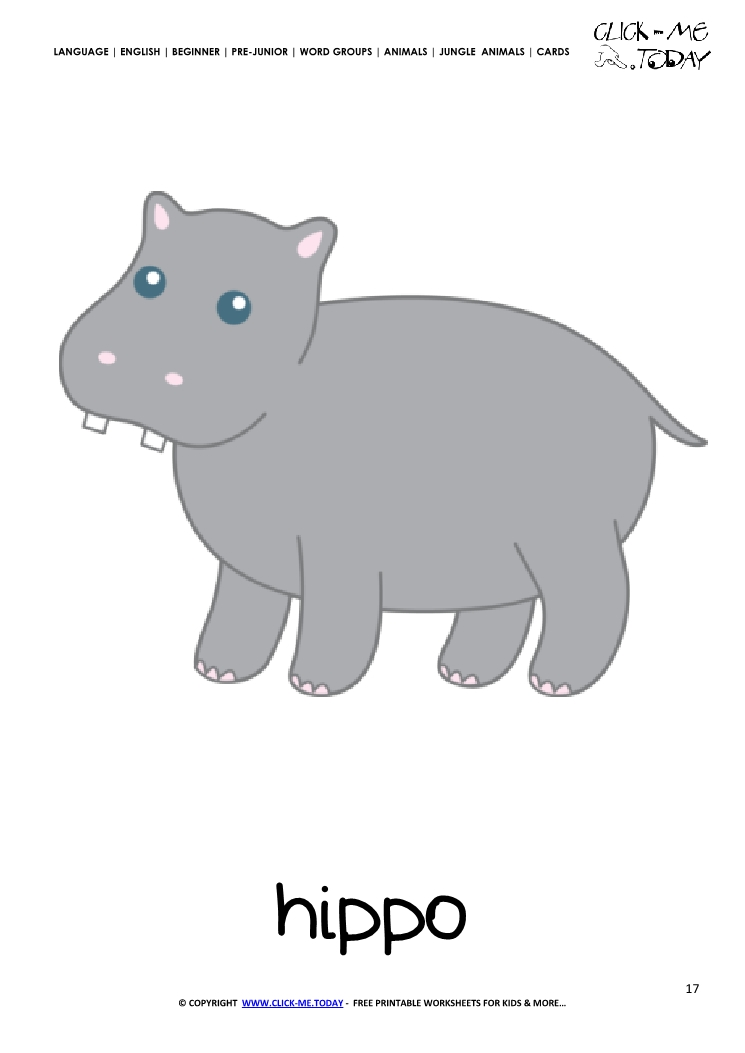 Jungle animal flashcard Hippo