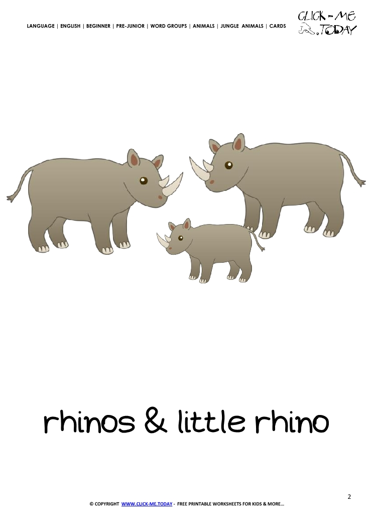 Jungle animal flashcard Rhinos - Printable card of Rhinos