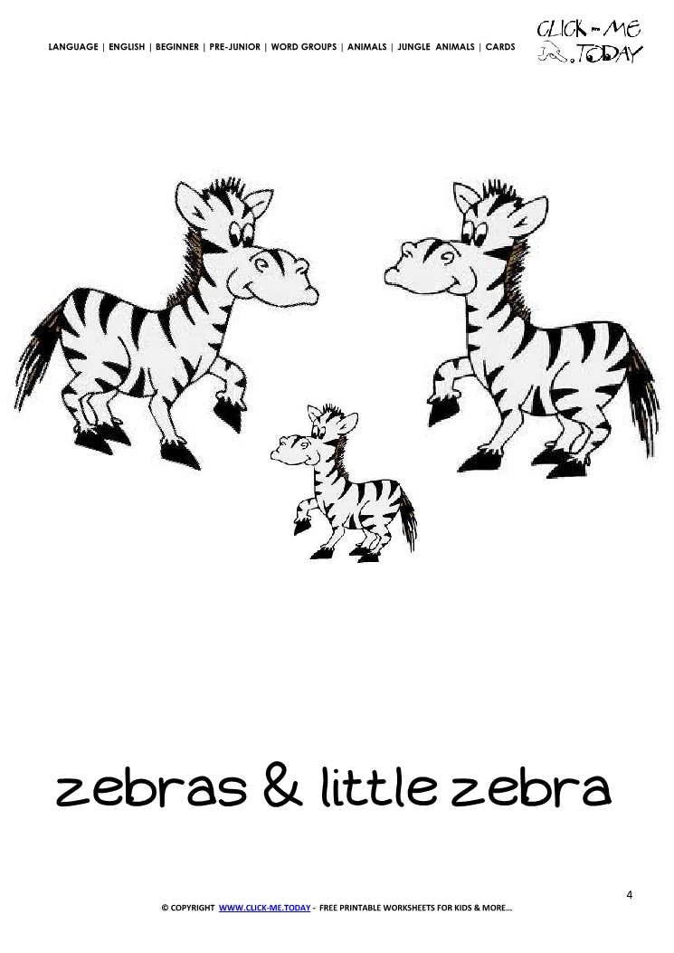 Jungle animal flashcard Zebras- Printable card of Zebras