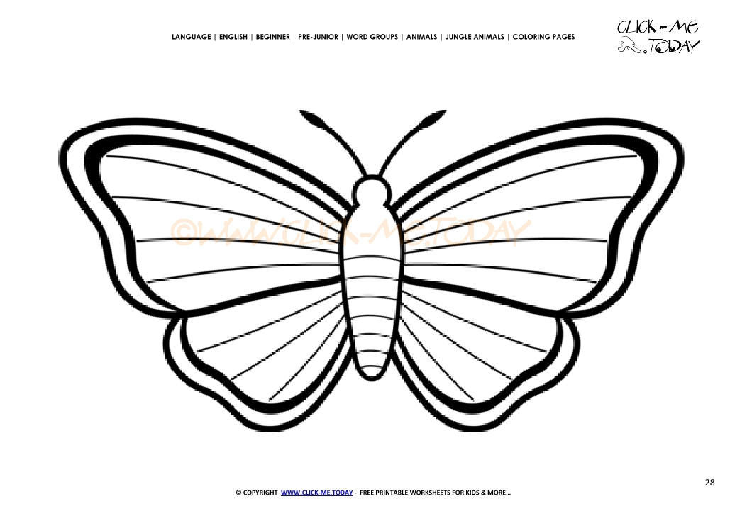 Coloring page Butterfly - Color picture of Butterfly