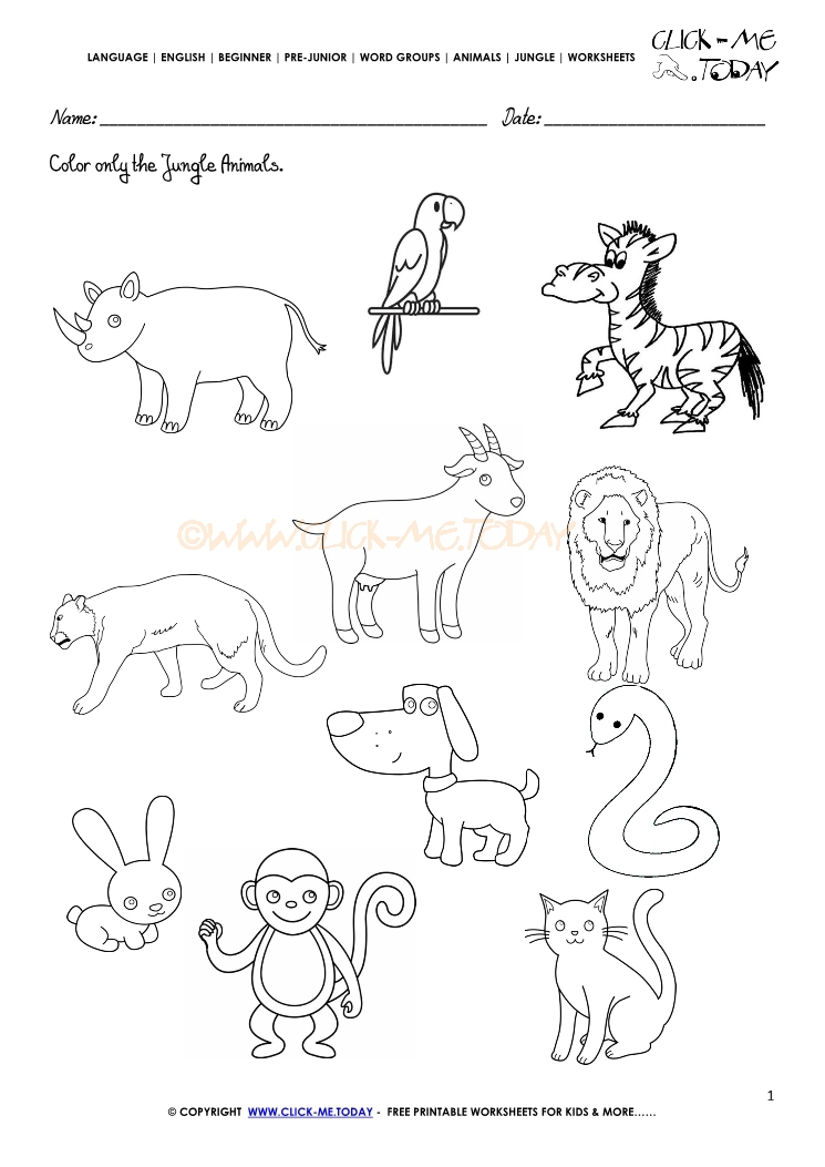 Pictures For Kids To Color For Groonups Of Animals