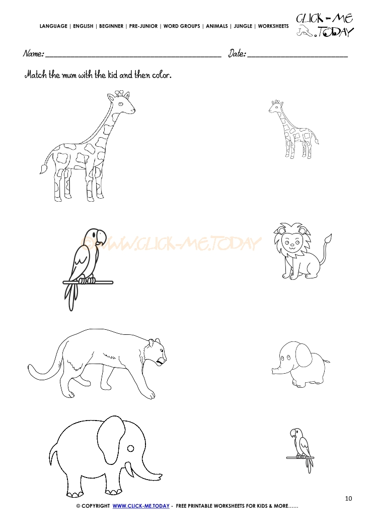 Jungle Animals Worksheet Activity Sheet Match 10