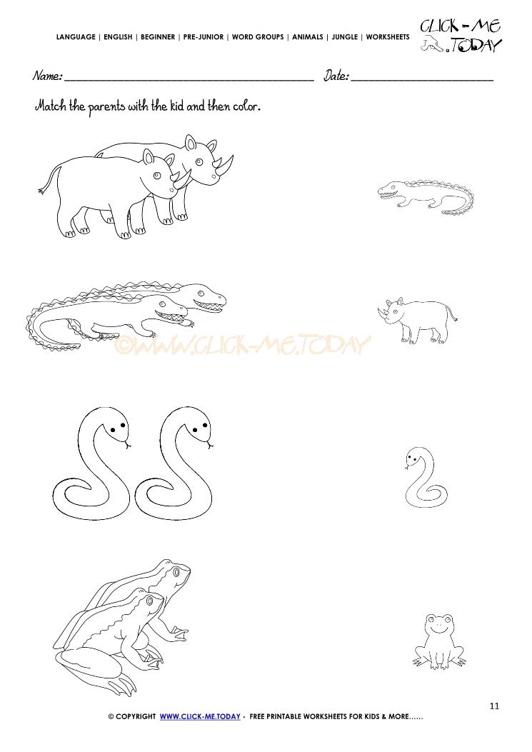 Jungle Animals Worksheet Activity sheet Match 11