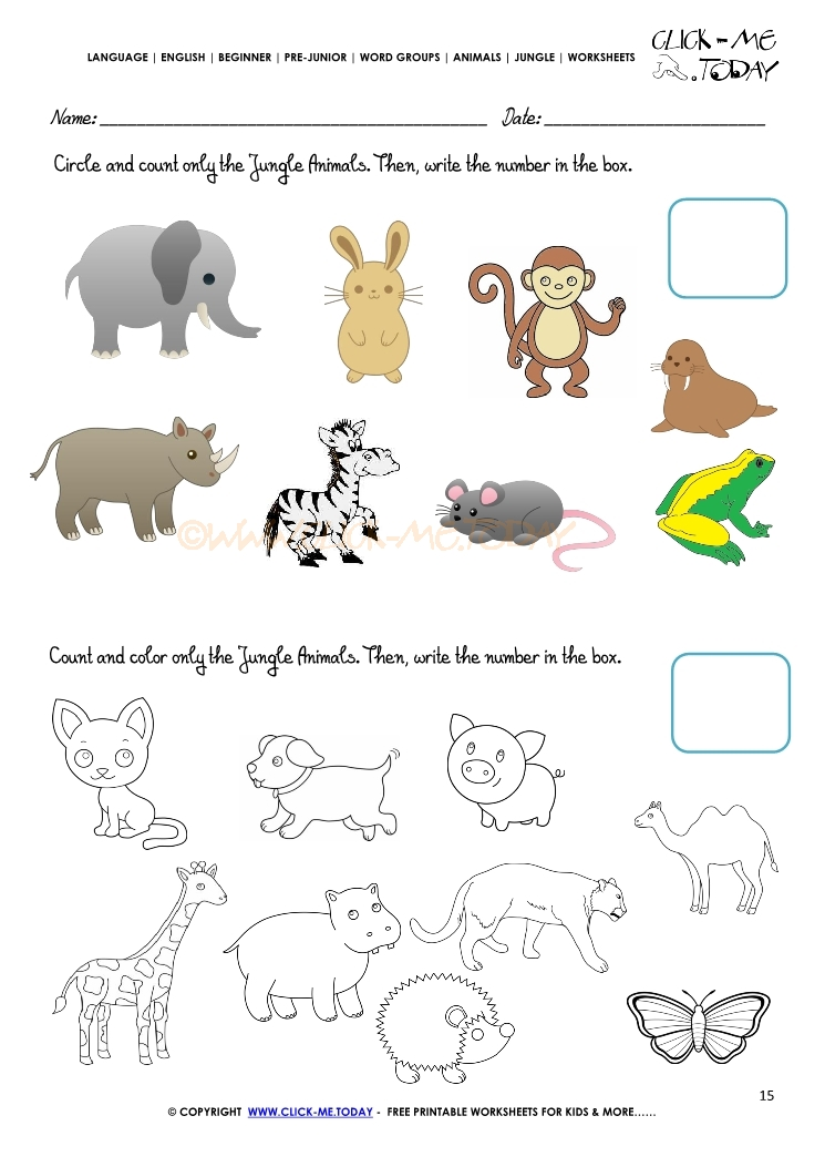 Jungle Animals Worksheet Activity Sheet Count 15