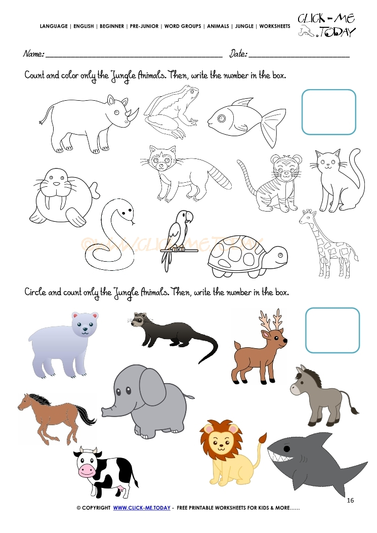 Jungle Animals Worksheet Activity Sheet Count 16