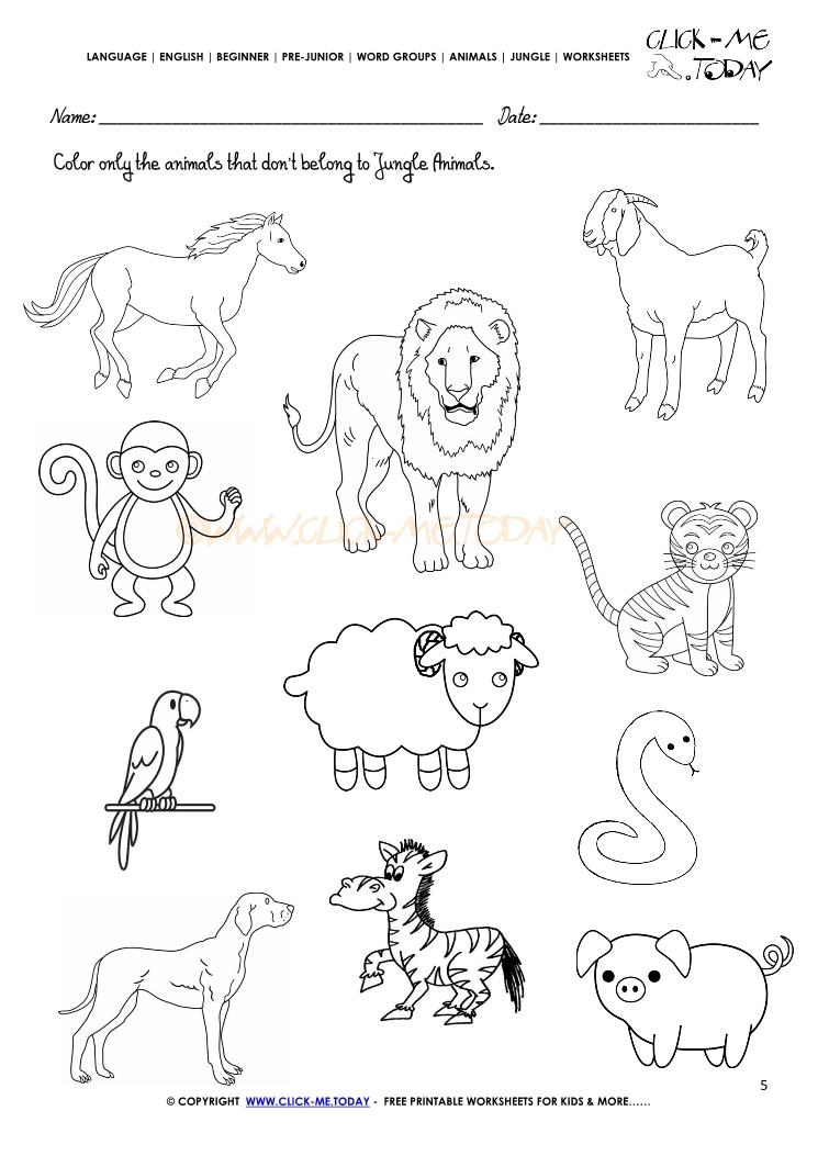 jungle animals worksheet activity sheet color 5. Black Bedroom Furniture Sets. Home Design Ideas