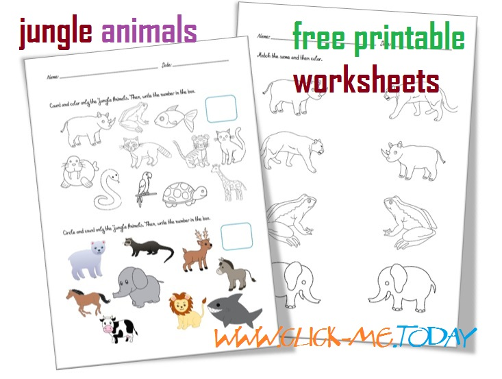 Free Printable Jungle Animals Worksheets Activities For Jungle Animals