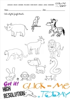 Jungle Animals Worksheet - Activity sheet Color 1