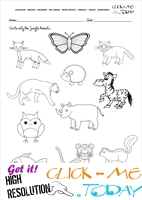 Jungle Animals Worksheet - Activity sheet Circle 3
