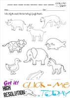 Jungle Animals Worksheet - Activity sheet Color 6