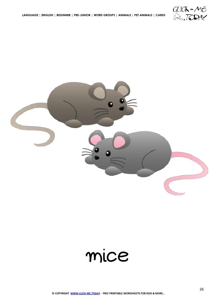 Printable Pet Animal Mice wall