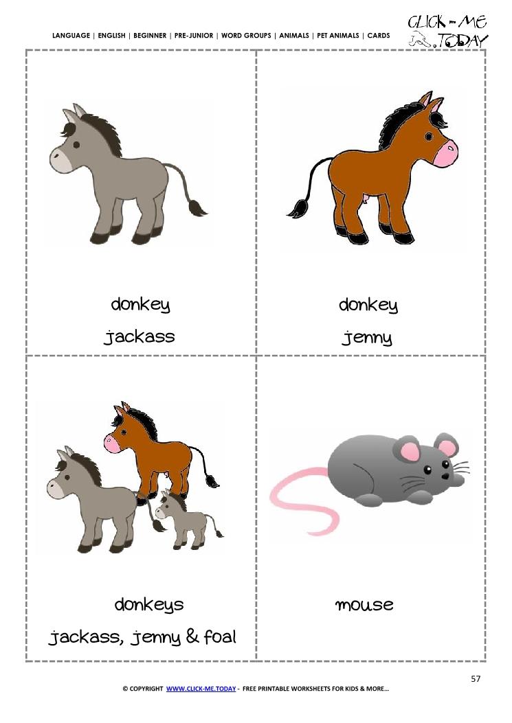 printable pet animals flashcards 6
