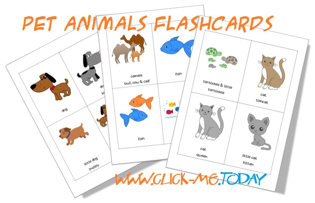 Printable Pet Animals Flashcards Kindergarten