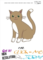 Printable Pet Animal Tomcat wall card - Tomcat flashcard