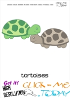 Printable Pet Animal Tortoises wall card - Tortoises flashcard
