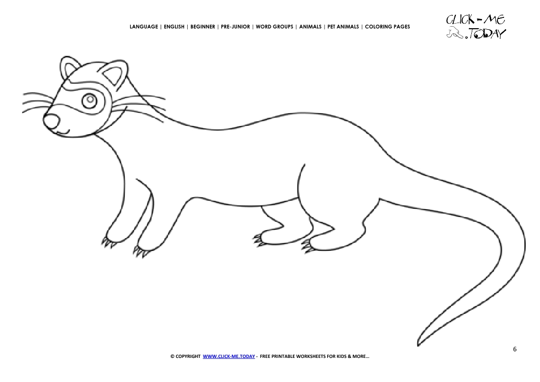 Coloring page Ferret - Color picture of Ferret
