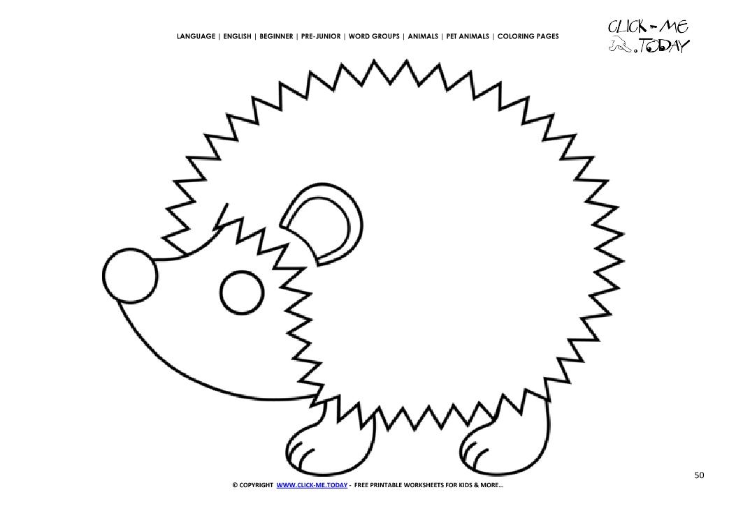 coloring page hedgehog color picture of hedgehog