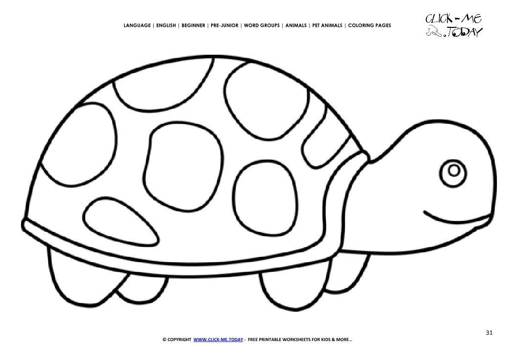 Coloring page Tortoise - Color picture of Tortoise