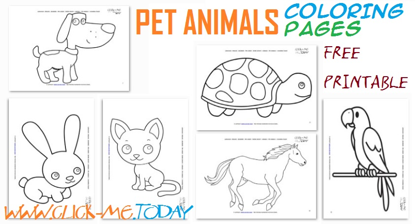 Taking Care Of Pets Coloring Pages
