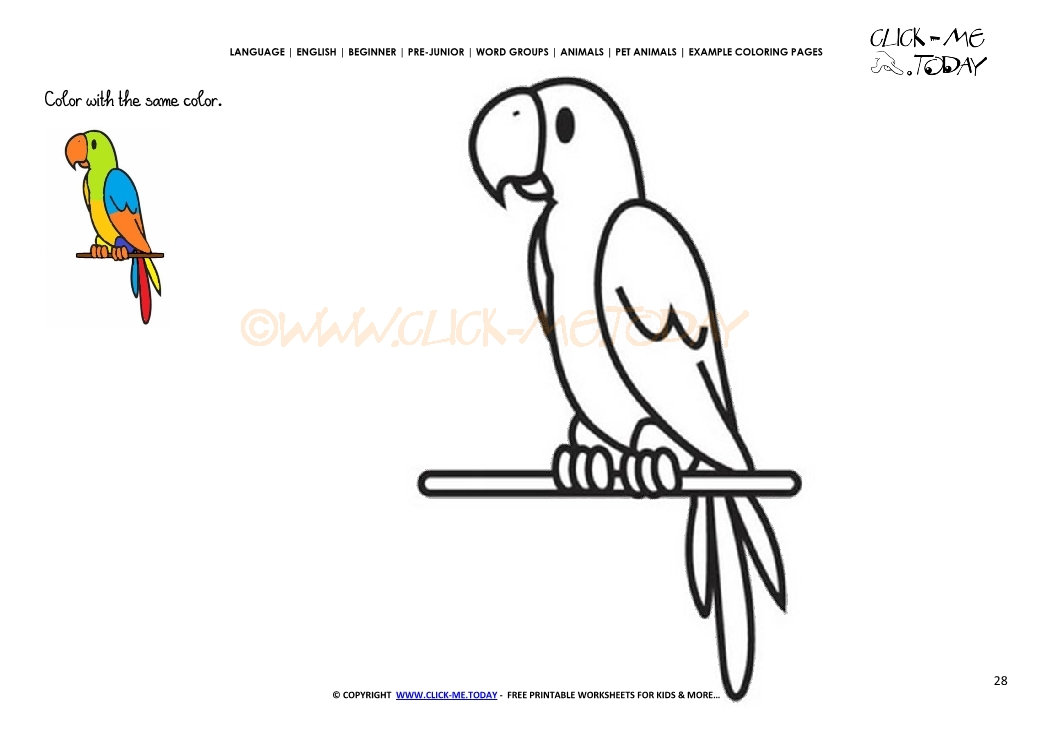 example coloring page parrot color parrot picture