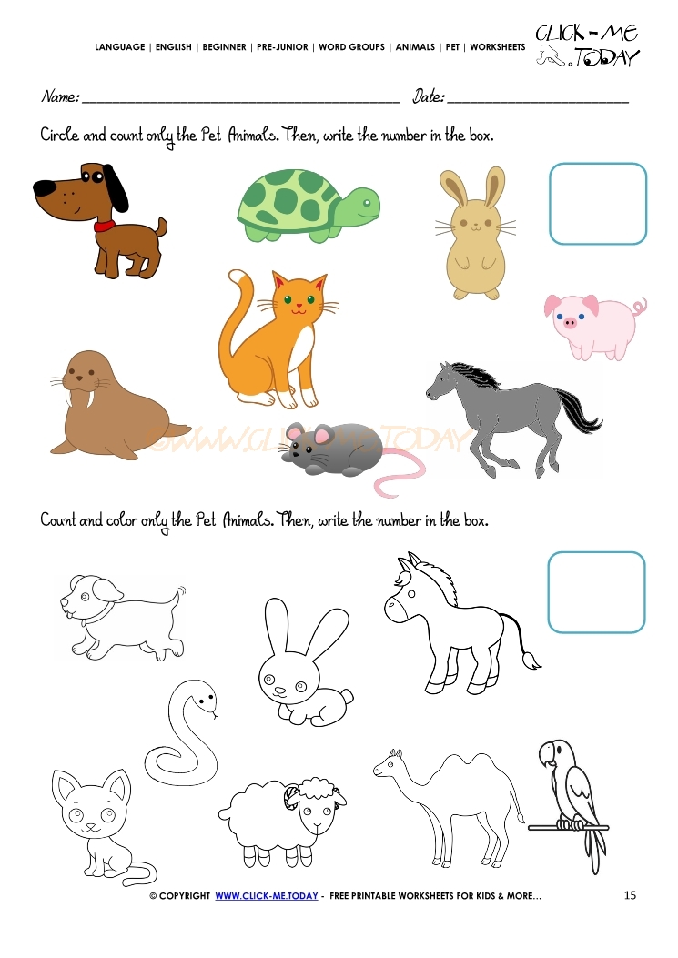 Pet Animals Worksheet - Activity Sheet 15
