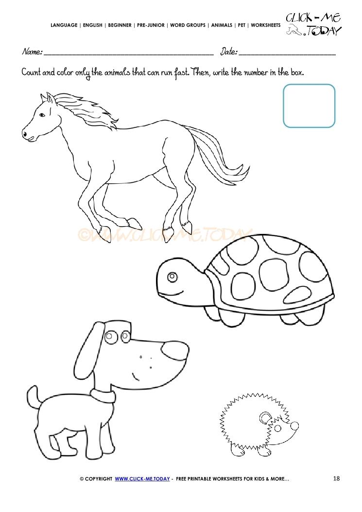 Pet Animals Worksheet - Activity Sheet 18
