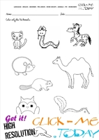 Pet Animals Worksheet - Activity Sheet 4