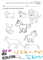 Pet Animals Worksheet - Activity Sheet 5