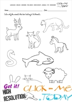 Pet Animals Worksheet - Activity Sheet 6