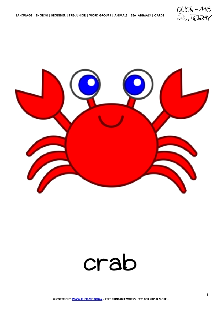 Sea animal flashcard Crab - Printable card of Crab