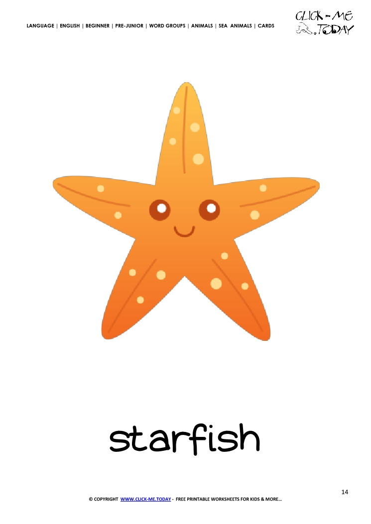graphic relating to Starfish Printable named Sea animal flashcard Starfish - Printable card of Starfish